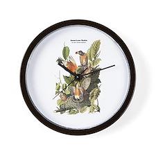 Audubon American Robin Birds Wall Clock