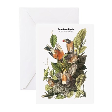 Audubon American Robin Birds Greeting Cards (Pk of