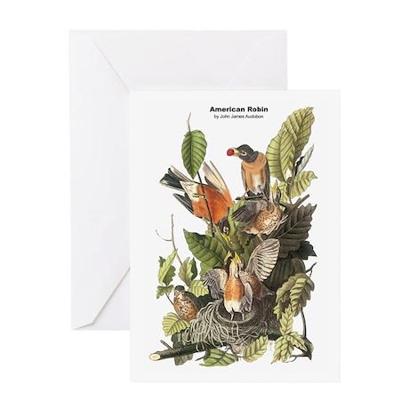 Audubon American Robin Birds Greeting Card