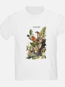 Audubon American Robin Birds (Front) T-Shirt
