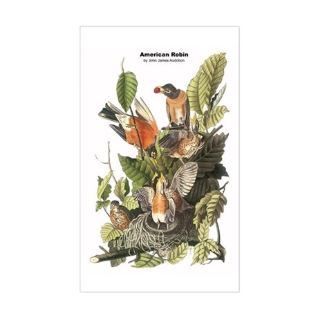 Audubon American Robin Birds Rectangle Sticker