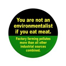 ENVIRONMENTALIST Button