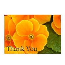 Primrose Thank You Postcards (Package of 8)