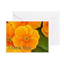 Primrose Thank You Greeting Cards (Pk of 20)