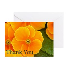 Primrose Thank You Greeting Cards (Pk of 10)