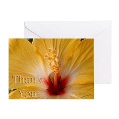 Hibiscis Thank You Greeting Card