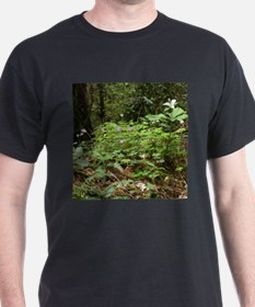 Redwood Forest Flowers T-Shirt