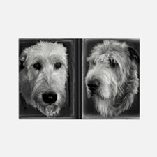Black & White Irish Wolfhound Rectangle Magnet