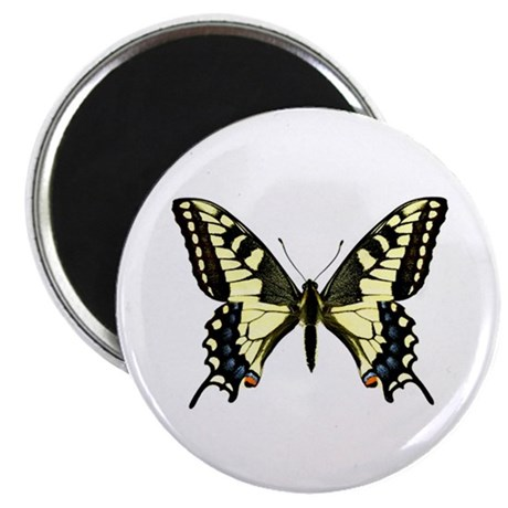 "Oregon Swallowtail 2.25"" Magnet (100 pack)"