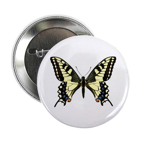 Oregon Swallowtail Button