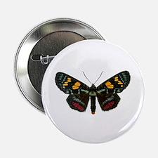 Multicolored Agarista Button