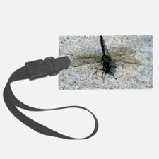 Black and Gold Dragonfly Luggage Tag