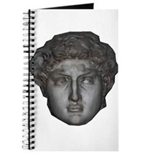 David's head by Michelangelo Journal