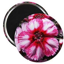China Pink Flower Magnet