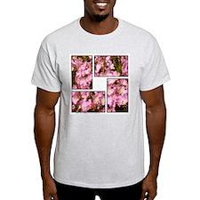 Siskiyou Pink Ash Grey T-Shirt