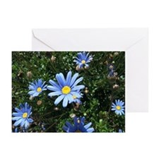 Blue Daisy Greeting Cards (Pk of 10)