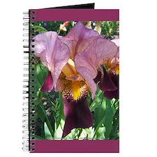 Dutch Iris Journal
