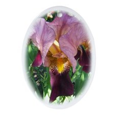 Dutch Iris Ornament (Oval)