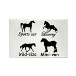 Horse Cars Rectangle Magnet (100 pack)