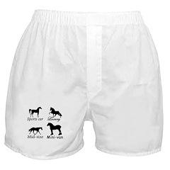 Horse Cars Boxer Shorts