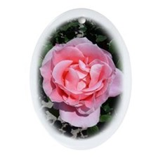 Pink Rose Ornament (Oval)