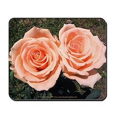 Peach Roses Mousepad