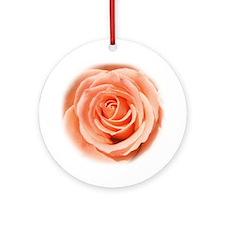 Peach Roses Ornament (Round)