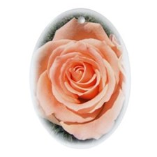 Peach Roses Ornament (Oval)