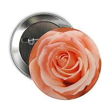 """Peach Roses 2.25"""" Button"""