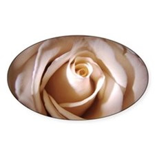 Ivory Rose Oval Decal