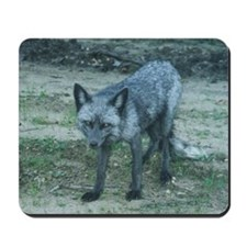 Silver Fox Mousepad