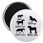 Horse Cars Magnet