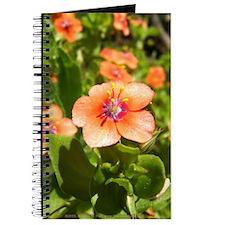 Scarlet Pimpernel Journal