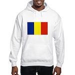 Armenia Flag Hooded Sweatshirt