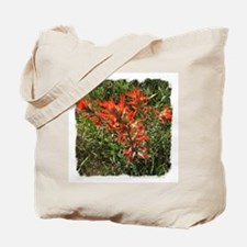 Indian Paintbrush Flower Tote Bag