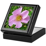 California Wild Rose Keepsake Box