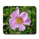 California Wild Rose Mousepad