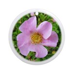 California Wild Rose Keepsake (Round)