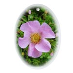 California Wild Rose Keepsake (Oval)