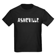Asheville Faded (Silver) T