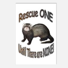 Rescue Ferret Postcards (Package of 8)