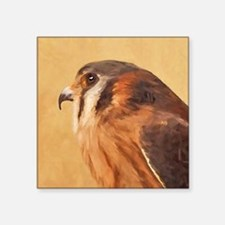 "American Kestrel Square Sticker 3"" x 3"""