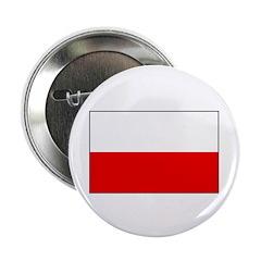 Polish Flag 2.25