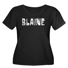 Blaine Faded (Silver) T