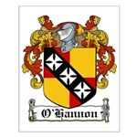 O'Hannon Family Crest Small Poster