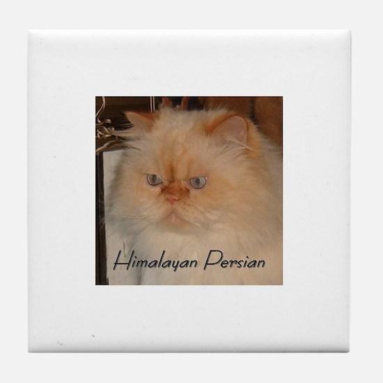 Cat Luv Tile Coaster