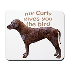 Curly Coat Bird Mousepad