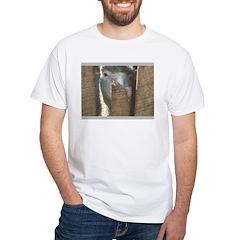 Sheep Watching Shirt