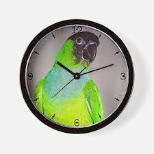 Nanday Conure Wall Clock