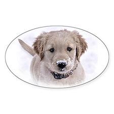 Golden Retriever Pup Oval Decal
